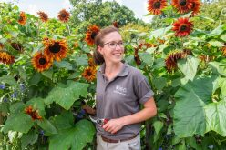 Royal Horticultural Society: Giselle Silvester