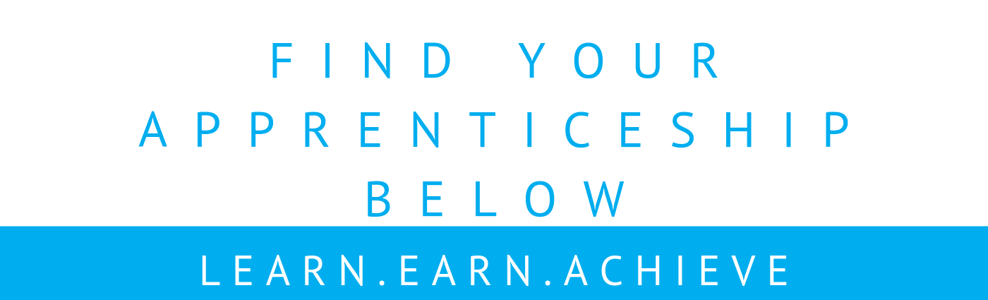 The Apprenticeship Guide sector head